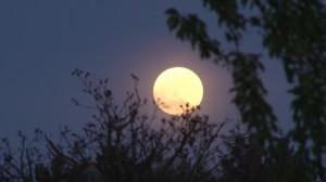 Fuldmåne og kraftige energier