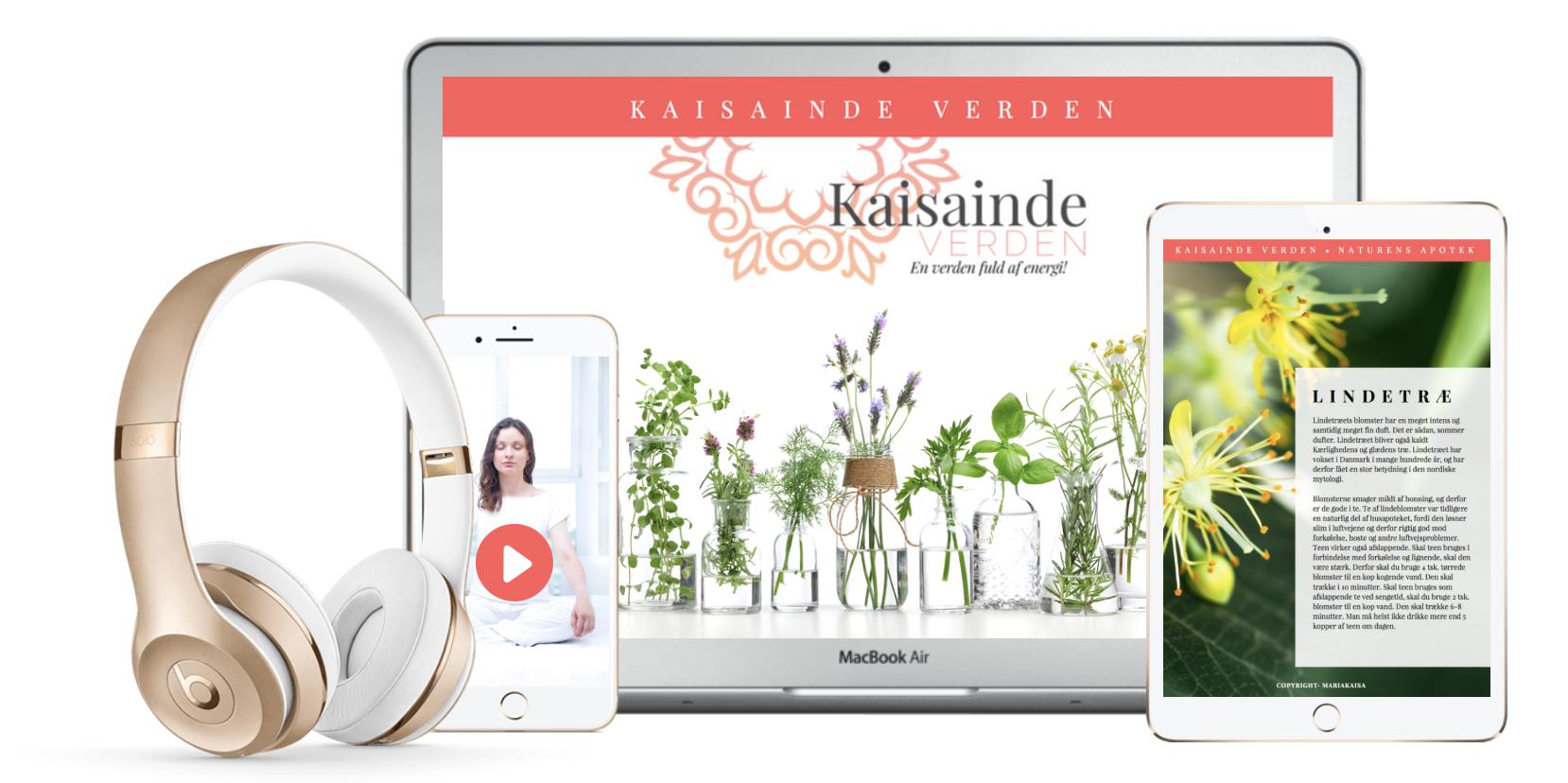 Chakratour d´lux online forløb med Mariakaisa